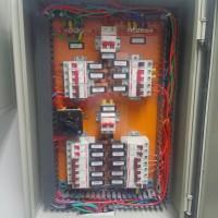CAM00455 (Large)